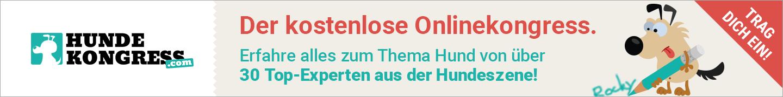 Online-Hundekongress
